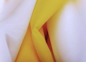 tissu de sérigraphie SAATI
